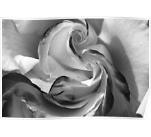 The Heart of a Rose, Black & White Poster