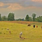 Pastoral Harmony by sundawg7