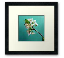 Still Life with Spring Framed Print