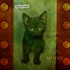 Black cat moon by Lynn Starner