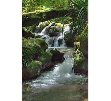Waterfall,Lamington National Park, Queensland, Australia  Photographic Print