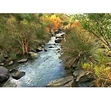 Wando river Photographic Print