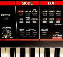 Roland Keyboard by StephenRphoto