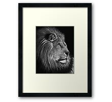 A Watchful Eye - lion Framed Print