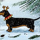 A Very Dachsie Christmas by Danelle Malan