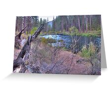 metolius riverscape Greeting Card