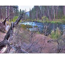 metolius riverscape Photographic Print