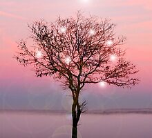 Magical Tree on the western Prairie.... by Kricket-Kountry
