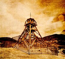 Helena Montana Firetower by Fran Riley