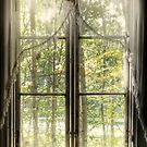 30.9.2014: View Through Old Window by Petri Volanen