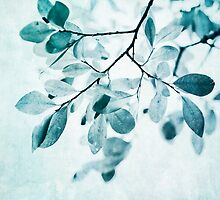 Leaves in dusty blue by Priska Wettstein