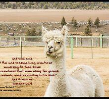 Bible Verse Genesis 1:24 by DianaBozart