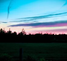 Canadian Pink Sky Night by Ed Warick