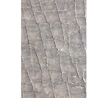 Elephant Skin - Nature Texture and Leather Photographic Print