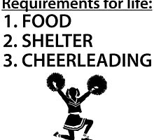 Food Shelter Cheerleading by kwg2200