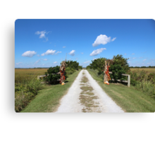 Long Road Home Canvas Print