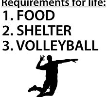 Food Shelter Volleyball by kwg2200