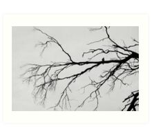 The Tortured Tree and the Crow. Art Print