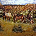 Up From The Canyons by Susan Bergstrom