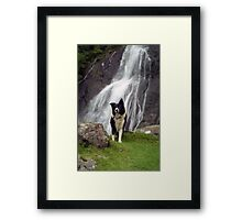 Indy at Aber Falls Framed Print