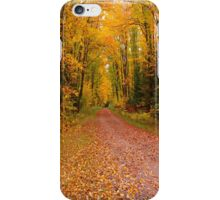 Yellow Walkway iPhone Case/Skin