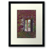 window of the house Framed Print
