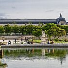 Tuileries Gardens, Paris, France #2 by Elaine Teague