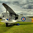 Dragon Rapide G-AIYR by larry flewers