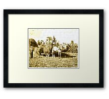 Eight-year old Jack driving load of hay ( Rural Child Labor, August, 1915 ) Massachusetts, USA Framed Print