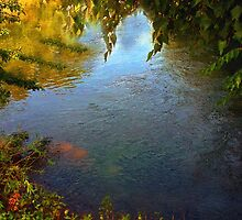 Sheltered Pond by RC deWinter