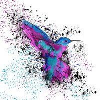 Splash of a Hummingbird by Chimerasdoodle
