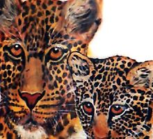 Leopards  by Mariaan M Krog Fine Art Portfolio