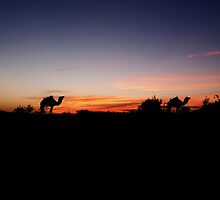 Sunset in the Sahara by Margotte