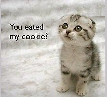You eated my cookie? by SentientGelatin