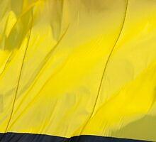 Waving Flag of Romania From 2014 Winter Olympics by pjwuebker