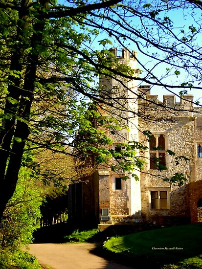 Medieval Manor by Charmiene Maxwell-batten