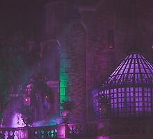 haunted mansion. by Diana Kelly