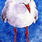seagull by pamfox