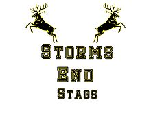 Storms End Stags Photographic Print
