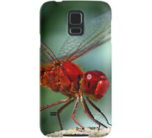 Enter the Dragon Samsung Galaxy Case/Skin