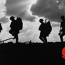Poppy Appeal 2014 by Country  Pursuits