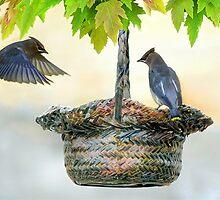 Cedar Waxwings in the Fall by littlecritters