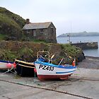 Mullion Harbour, Cornwall, UK by hootonles