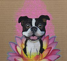 Zen Boston Terrier by PaperTigressArt