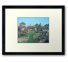Sheds on allotments at Southampton Framed Print