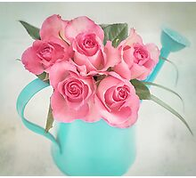 Five beautiful Pink Roses in a teal watering can Photographic Print