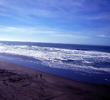 ocean beach,san francisco by califpoppy65