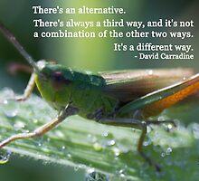 Ahhh grasshopper by Optic-Nerve