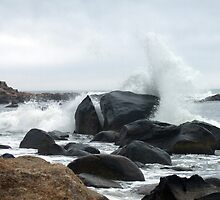 Spray Rock, Weekapaug, RI 2 by Maureen Zaharie