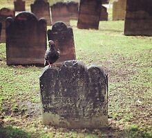 Pigeon on Gravestone, Trinity Church by Lagoldberg28
